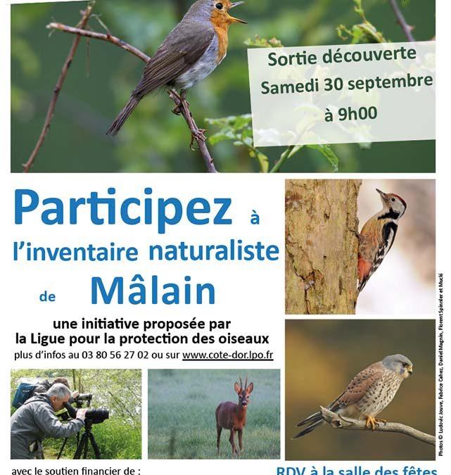 Inventaire de la biodiversité communale – Sortie numéro 2