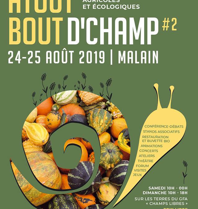 Festival Atout Bout d'Champ #2